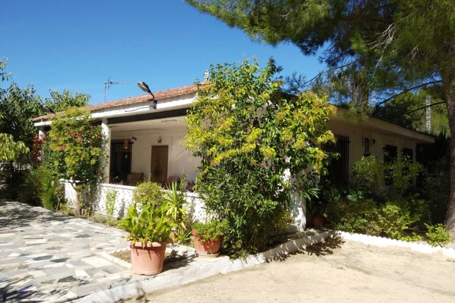 For sale - Country House - Gaianes