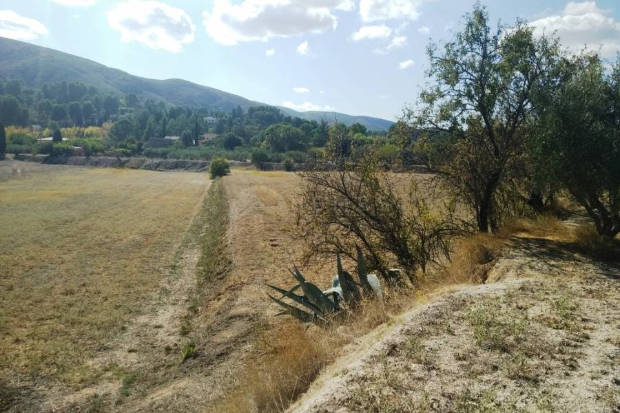 For sale - Finca - Ontinyent